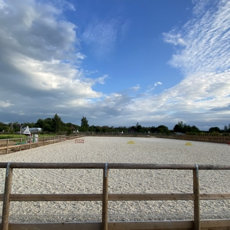 Проектирование и строительство конных полей